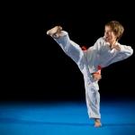 Aikido – en japansk harmonisk väg